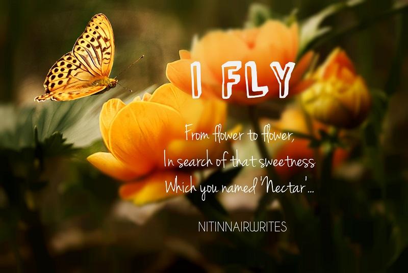 I Fly - Poem by Nitin